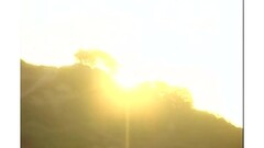 German mature big tits secretary business milf fuck Thumb
